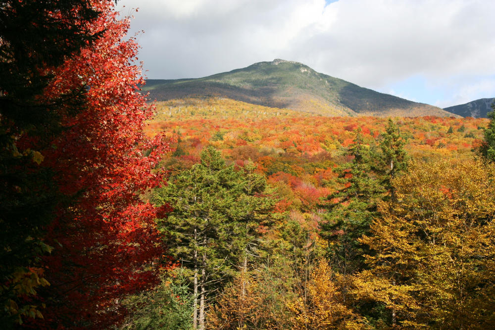 White Mtns, NH