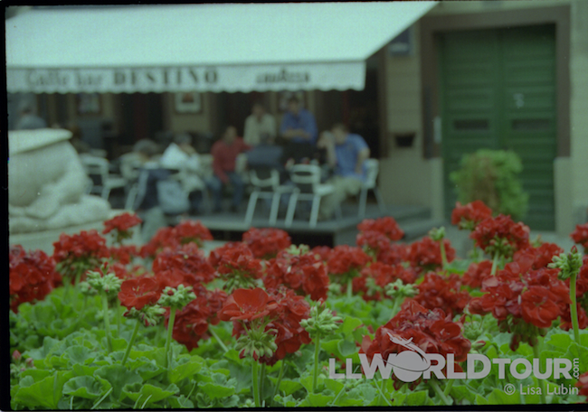 Croatia flowers cafe Travel Tip Tuesday: Travel Burnout    Is There Such a Thing as Traveling Too Much?