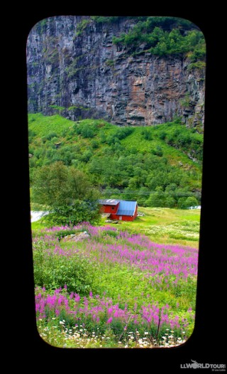 Flam Rail214 320x526 Photo Essay: Fjord Fun in Norway – Norway in a Nutshell