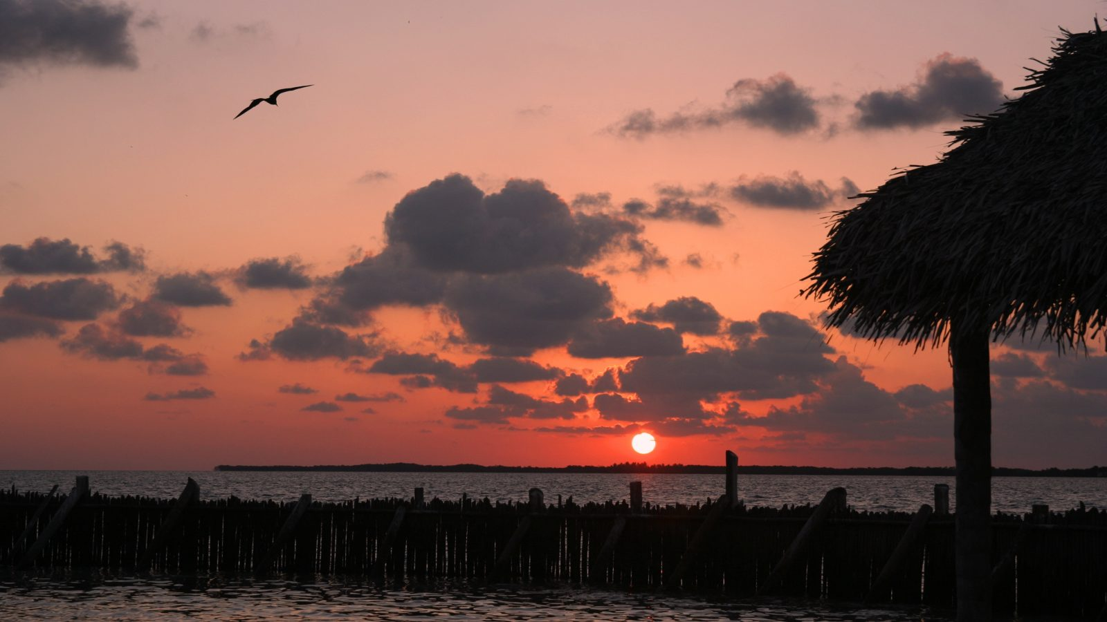 Paradise in Belize