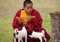 Photo Essay: Bhutan & A Little About the Country