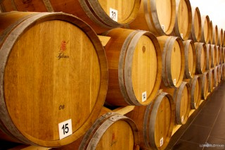 Barrels of Brandy