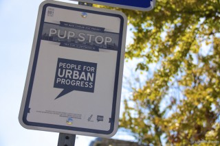 Indy PUP Stop