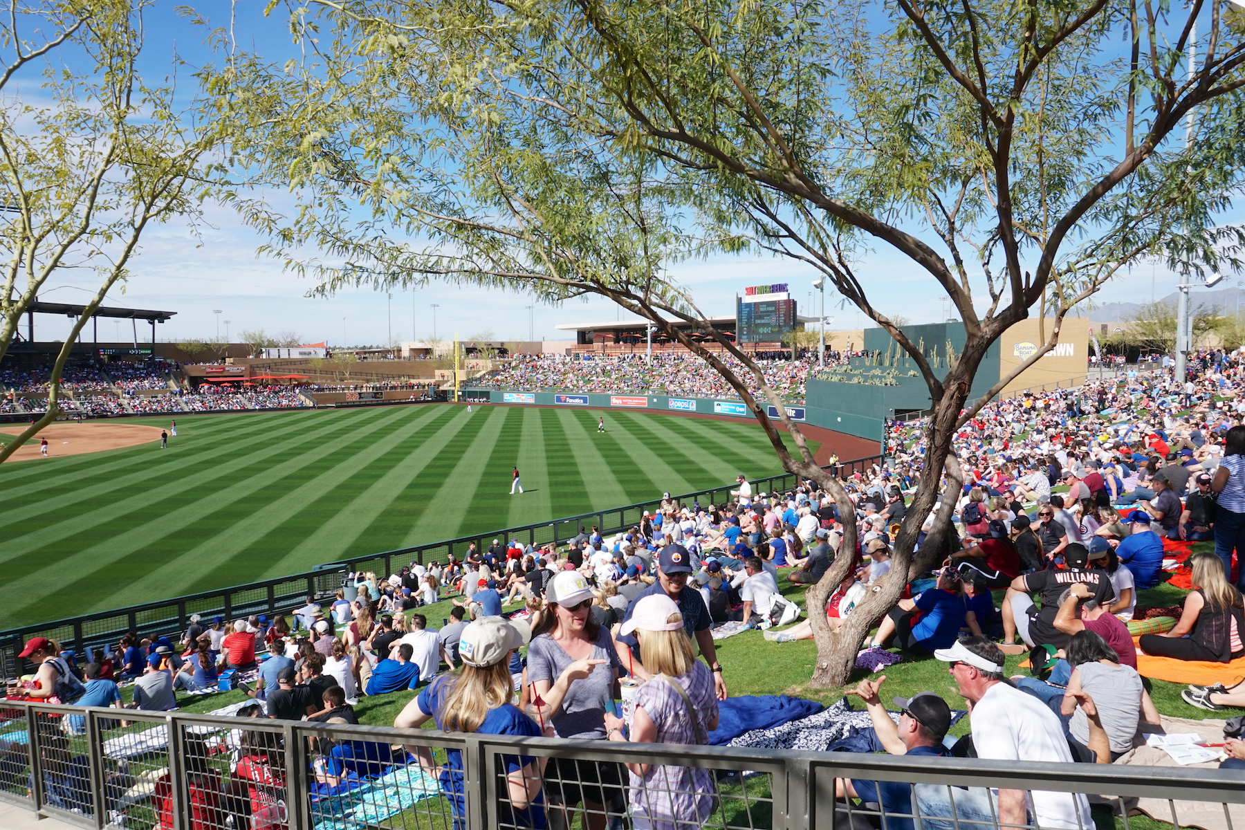 Salt River Fields Park